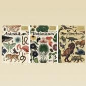 BENVINGUTS AL MUSEU dels llibres #ANIMÀLIUM  #BOTÀNICUM #DINOSÀRIUM #diadelsmuseus #novaedició després de l'estiu😊